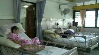 Download LIFE Before Death What is Pain? Video
