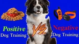 Download WARNING! Extremely Controversial! Positive Dog Training vs Negative Dog Training! Video