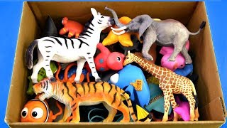 Download Learn Wild Zoo Animals Name For Kids Safari Animal Names Learn Colors Video