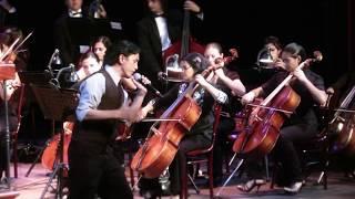 Download Orquesta Filarmónica - Help! Video