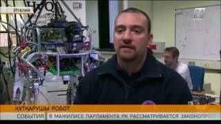 Download Италияның ғалымдары құтқарушы-роботты ойлап шығарды Video