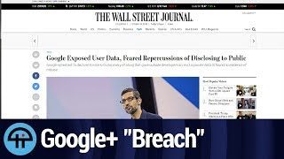 Download The ″Breach″ That Killed Google+ Wasn't a Breach Video