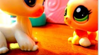 Download Littlest Pet Shop: Running Away (Episode #1 ″Abuse″) [REMAKE] Video