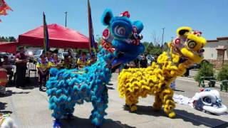Download Lion Dance Introductions - CLDC 2017 Video