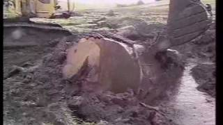 Download Ancient Kauri Extraction Video