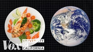 Download The diet that helps fight climate change Video