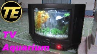 Download How To Build a TV Aquarium Video