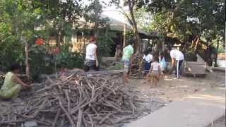 Download 2013/03/16老婆和雅筑回越南探親-Vietnam Ben Tre Cho Lach Video