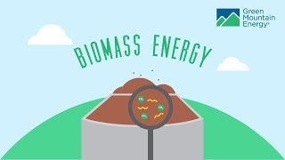 Download Renewable Energy 101: How Does Biomass Energy Work? Video