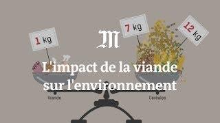 Download L'impact de la viande sur l'environnement expliqué en 4 minutes Video