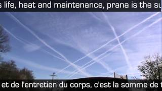 Download Chemtrails, Prana:Qi & YOU Video