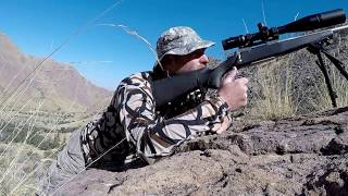 Download SOLO Coues Deer HUNT Arizona DAY 1 Video