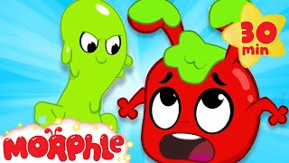 Download Oh No Moprhle's Slimed - My Magic Pet Morphle | Cartoons For Kids | Morphle TV Video