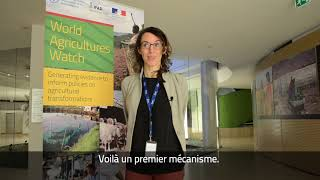 Download Interview with Eva Hershaw, International Land Coalition (ILC) Video