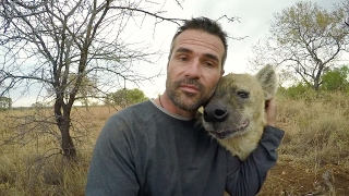 Download The Lost Footage | The Lion Whisperer Video