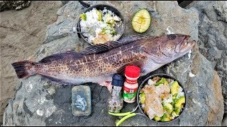 Download Catch and Cook!!! BOILING Rice - Fish, Avocado, and Butter! SO EASY!!!! Video