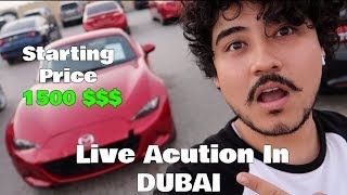 Download Live Auction In DUBAI Amazing Cars ( INSANE PRICES ) Video