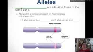 Download Intro to Genetics Video