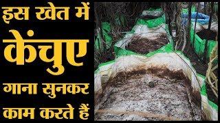 Download Sagar के इस Farmer का तरीका अपनाएं तो देश भर के Kisan खूब पैसे कमाएंगे | The Lallantop Video