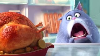 Download THE SECRET LIFE OF PETS Trailer (Animation - 2015) Video