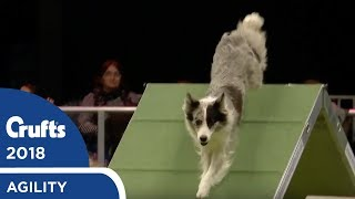 Download Agility - International Invitation - Large Agility Finals | Crufts 2018 Video