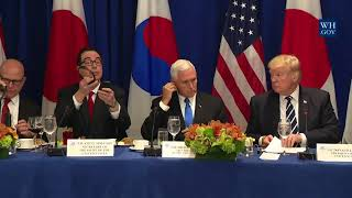 Download President Trump with the Prime Minister of Japan and the President of the Republic of Korea Video
