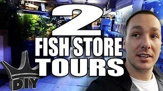 Download 2 Fish store tours and Discus Aquarium Set Up Video