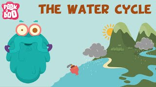 Download The Water Cycle | The Dr. Binocs Show | Learn Videos For Kids Video