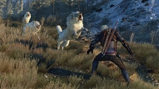 Download The Witcher 3's Open World VS. Skyrim's - IGN Review Discussion Video