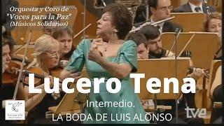 Download Intermedio. La boda de Luís Alonso. J Gimenez. Lucero Tena Video