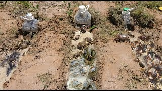 Download Smart Boys Make Easy Deep Hole Bottle Crab Trap To Catch A Lot Of Crab Video