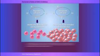 Download The Biological Rationale for CDK4/6 Inhibitors Video