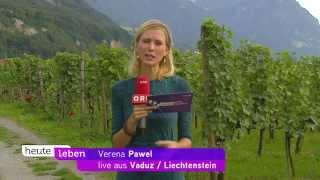 Download Fürstliche Hofkellerei - ORF-Sendung ″heute leben″ Video