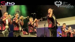 Download Banda Tierra de Venados - Volvertelo hacer - Ángel de la Indepedencia Video