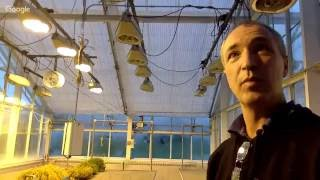 Download Greenhouse and growth chamber tour w/ Brian Bell Video