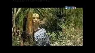 Download Garhwali film-Bhag Meru Maya Teri,part-5 Written & Driected by Bhagwan chand m-no-09041834155 Video