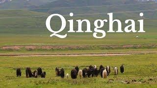 Download THINGS TO DO IN QINGHAI, CHINA | Qinghai Travel Guide | Tibetan Plateau Video