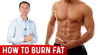 Download How To Burn Fat Video