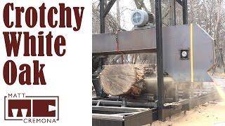 Download Slabbing the Crotchy White Oak Log (Big Logs #3) Video