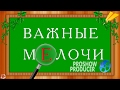 Download ProShow Producer ВАЖНЫЕ МЕЛОЧИ Video