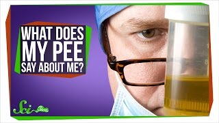 Download What Does My Pee Say About Me? Video