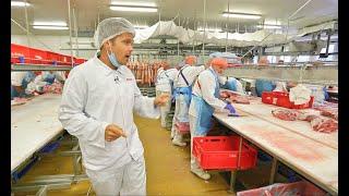 Download Elképesztő tempóban dolgoznak a hentesek az ország egyik legnagyobb húsüzemében Video
