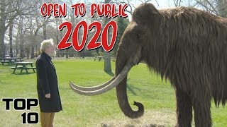 Download Top 10 Extinct Animals Being Brought Back To Life Video
