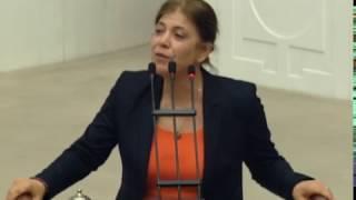 Download Meral Danış Beştaş'ın cezaevinden çıktıktan sonraki ilk konuşması Video