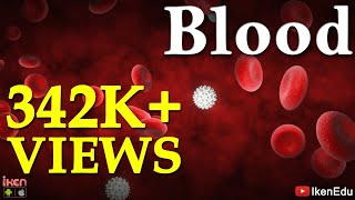 Download Blood | Learn About Blood Composition And Its Functions Video
