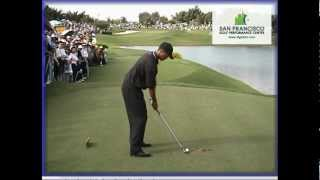 Download Tiger Woods 2000 Golf Swing Normal Speed & Frame-by-frame Video