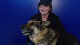 Download Marine Who Fought to Adopt K-9 Partner in Iraq Is Now a Movie, 'Megan Leavey' Video