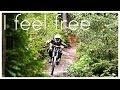 Download DOWNHILL Movie Bikepark Schöneck 2014 - I Feel Free Video
