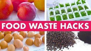 Download Food Waste Hacks! - Mind Over Munch Video