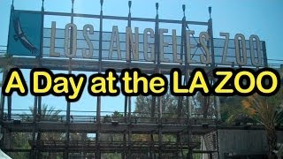Download A Day at the LA Zoo Video